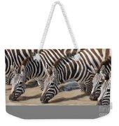 Common Zebras Drinking Water Weekender Tote Bag