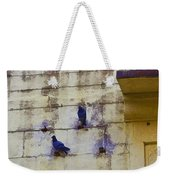 Couple Of Pigeons On A Wall Weekender Tote Bag