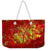Crimson Window Weekender Tote Bag
