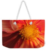 Dahlia From The Showpiece Mix Weekender Tote Bag