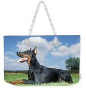 Doberman Pinscher Dog Weekender Tote Bag