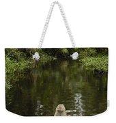 Dugout Canoe In Blackwater Stream Weekender Tote Bag