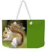 Eastern Gray Squirrel Weekender Tote Bag