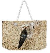 Edible-nest Swiftlet On Nest Weekender Tote Bag
