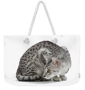 Egyptian Mau Cat Weekender Tote Bag
