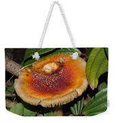 Fairy Mushrooms Weekender Tote Bag