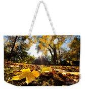 Fall Autumn Park. Falling Leaves Weekender Tote Bag