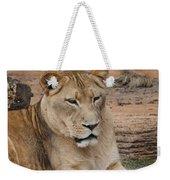 Female African Lion Weekender Tote Bag