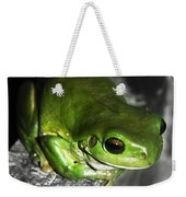 Fence Frog Weekender Tote Bag