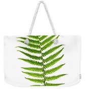 Fern Leaf Weekender Tote Bag by Elena Elisseeva