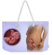 Fetal Development Week 25 Weekender Tote Bag