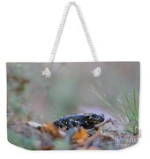 Fire Salamander - Salamandra Salamandra Weekender Tote Bag