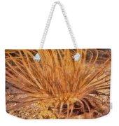 Firework Anemone Weekender Tote Bag