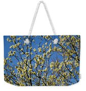 Fluffy Catkins At At Tree Against Blue Sky Weekender Tote Bag