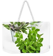 Fresh Herbs In Pots Weekender Tote Bag