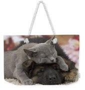 German Shepherd And Chartreux Kitten Weekender Tote Bag