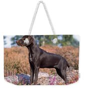 German Short-haired Pointer Puppy Weekender Tote Bag