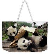 Giant Panda Ailuropoda Melanoleuca Pair Weekender Tote Bag