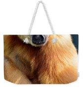 Gibbon Monkey  Weekender Tote Bag