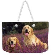 Golden Retriever Dogs In Heather Weekender Tote Bag