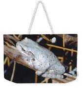 Gray Treefrog Weekender Tote Bag