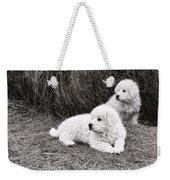 Great Pyramise Pups Weekender Tote Bag