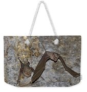 Greater Mouse-tailed Bat Rhinopoma Microphyllum Weekender Tote Bag