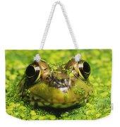 Green Frog Hiding In Duckweed Weekender Tote Bag