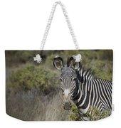 Grevys Zebra Stallion Weekender Tote Bag