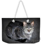 Grey Cat Portrait Weekender Tote Bag