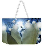 1 H Sphrs Absorbing The Majesty Weekender Tote Bag