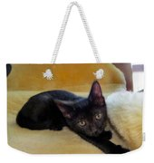Hamming It Up Weekender Tote Bag by Art Dingo