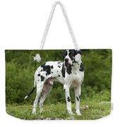 Harlequin Great Dane Weekender Tote Bag