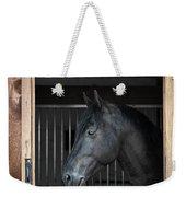 Horse In Stable Weekender Tote Bag by Elena Elisseeva