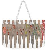 Human Systems In The Female Anatomy Weekender Tote Bag