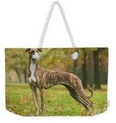 Hungarian Greyhound Weekender Tote Bag