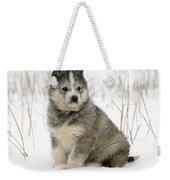 Husky Dog Puppy Weekender Tote Bag