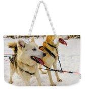 Husky Sled Dogs, Lapland, Finland Weekender Tote Bag