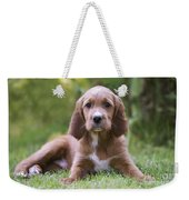 Irish Setter Puppy Weekender Tote Bag
