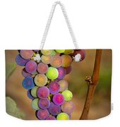 Jewel Tones Weekender Tote Bag by Jean Noren