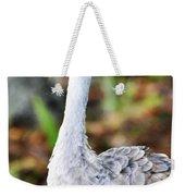 Juvenile Sandhill Crane Grus Canadensis Pratensis II Usa Weekender Tote Bag