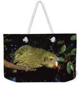Kakapo Feeding On Supplejack Berries Weekender Tote Bag