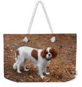 My Sweet Daisy Weekender Tote Bag