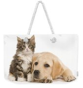 Labrador And Forest Cat Weekender Tote Bag