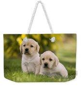 Labrador Puppies Weekender Tote Bag