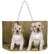 Labrador Retriever Puppies Weekender Tote Bag