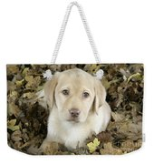 Labrador Retriever Puppy Weekender Tote Bag