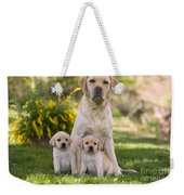 Labrador With Two Puppies Weekender Tote Bag