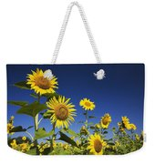 Laval, Quebec, Canada Sunflowers Weekender Tote Bag