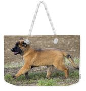 Leonberger Puppy Weekender Tote Bag